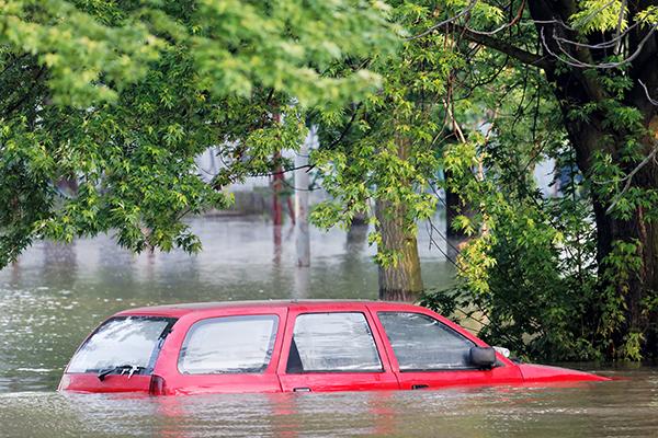 Louisiana Help
